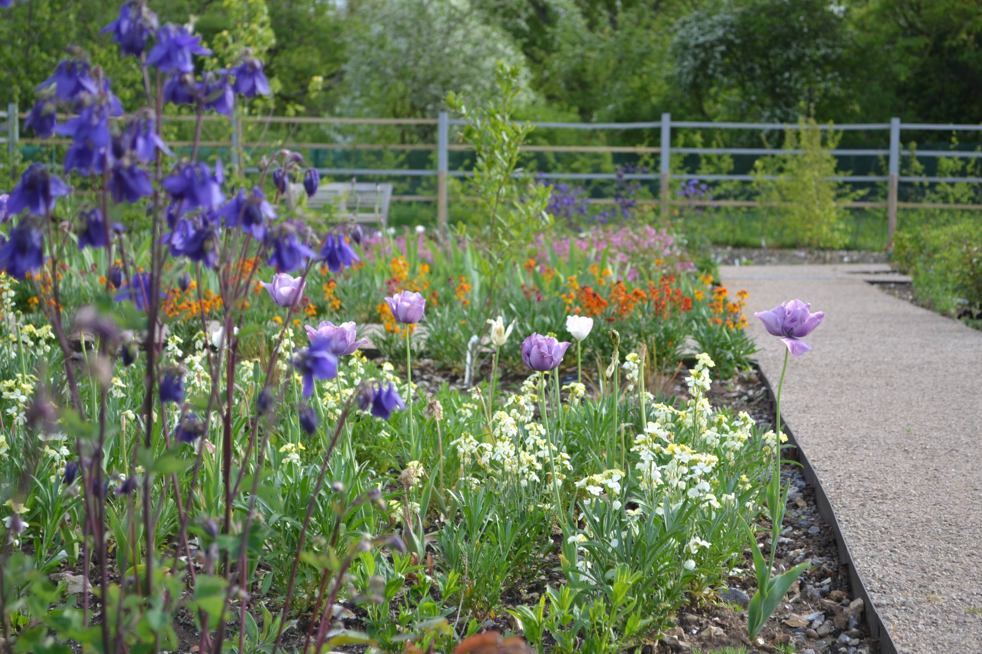 Keyneston Mill Gardens